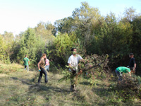 2014-10-18-chantier-nature-paradis-2-tn